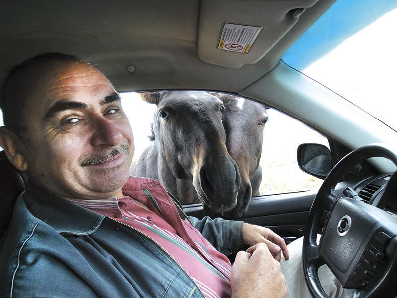 кони-1