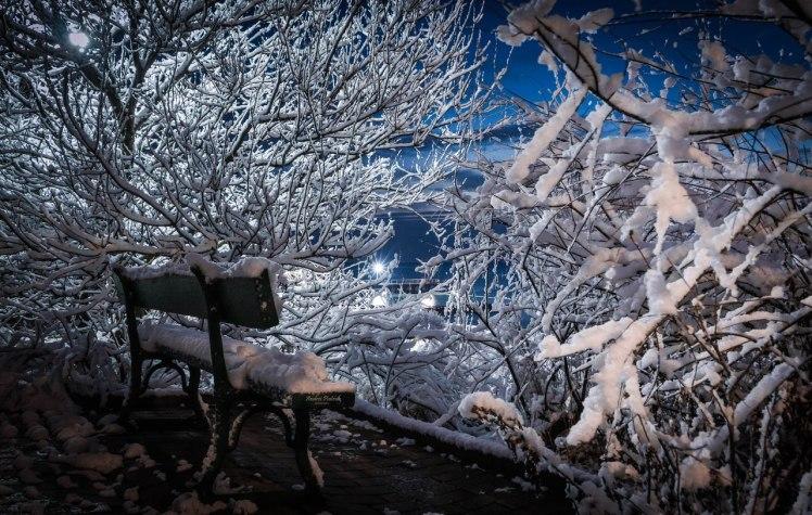Фото: Андрей Петрук
